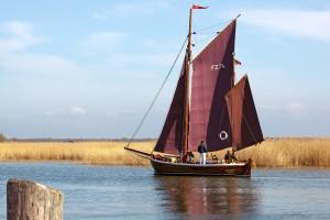 segelschiff-am-zingster-strom-hafen-von-zingst_e4c5a53c1066ad5f6f621c87a013145a_l